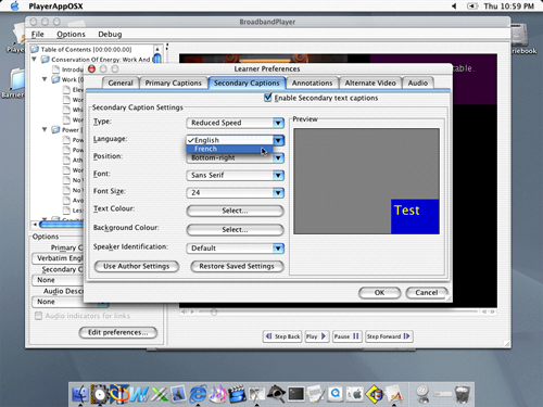 Screen shot showing learner preferences interface